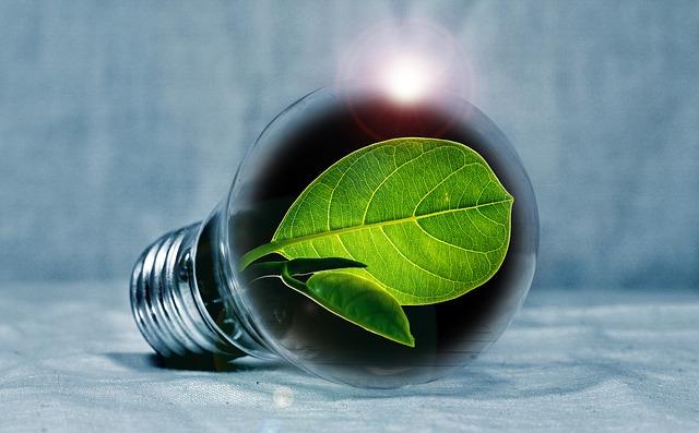 ricerca e innovazione per il settore biologico